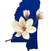 Mississipi and Magnolia flower icon